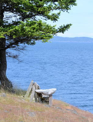 photo taken in the San Juan Islands by Nancy Zavada