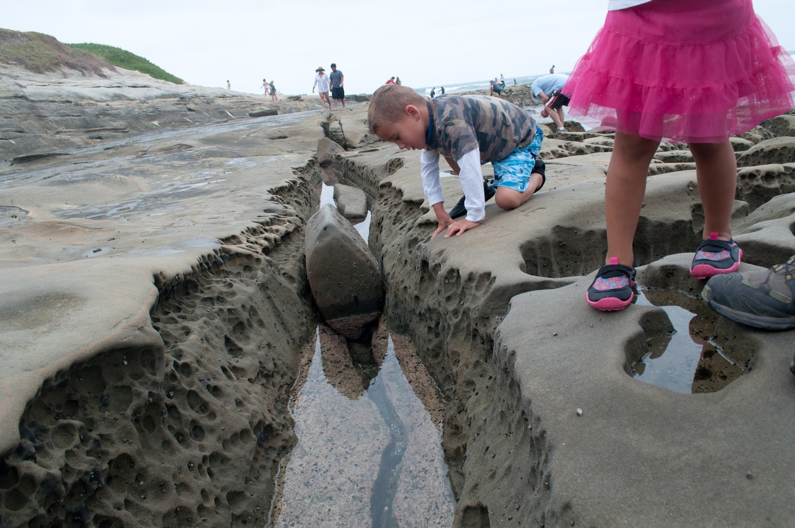The adventures of asher journey tide pools and sea for Tides for fishing san diego