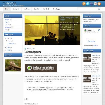 TinyWeb blogger template. magazine style blogger template with images lider content