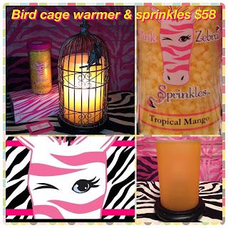 Pink Zebra Birdcage Simmering Light Image