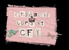 ik heb de top 3 behaald CFY10