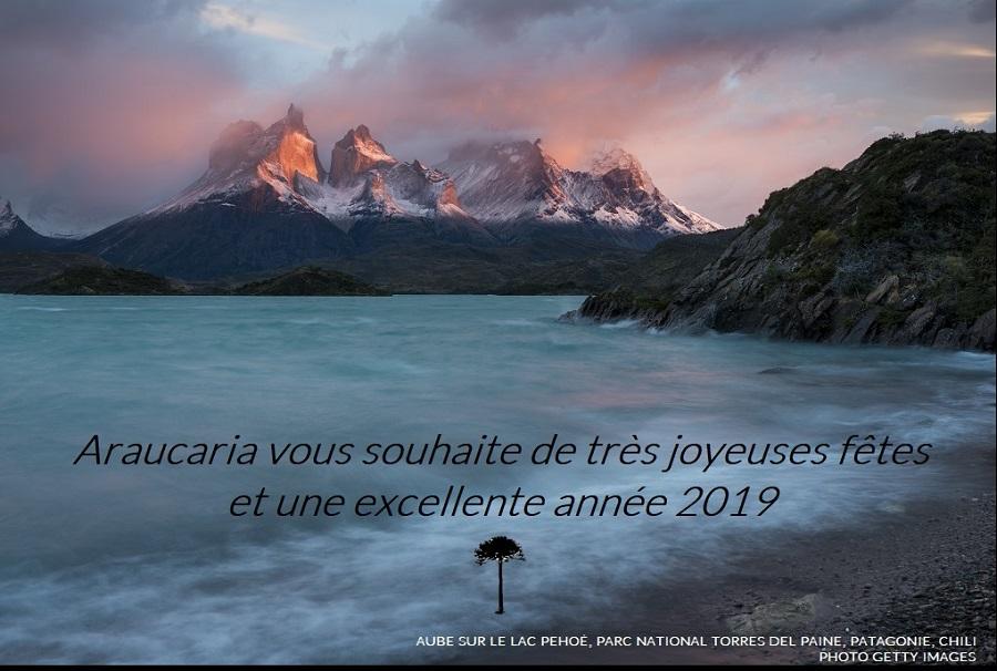 ★ BONNE ANNÉE 2019 ! ★