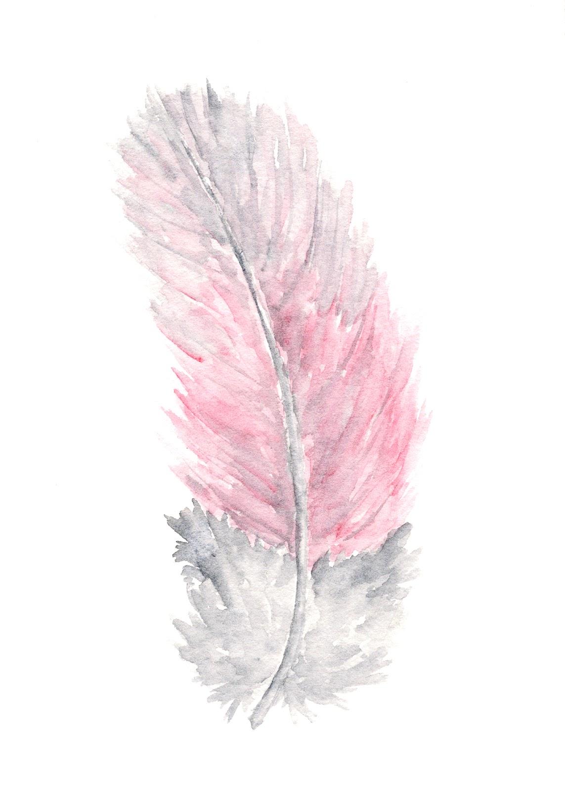 Thimble Sparrow: Galah parrot feather painting