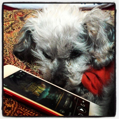 Murchie lays curled on his red comforter. He wears an orange t-shirt with brown trim. Before him is a red-bordered iPod with Borders of Infinity's cover on its screen. The cover is indistinct from this angle but is vaguely spacey and dark blue with the title in yellow.