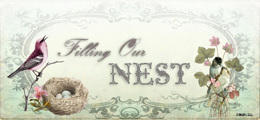 Filling Our Nest