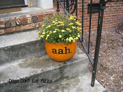 Fall pumpkin planters - DogsDontEatPizza.com