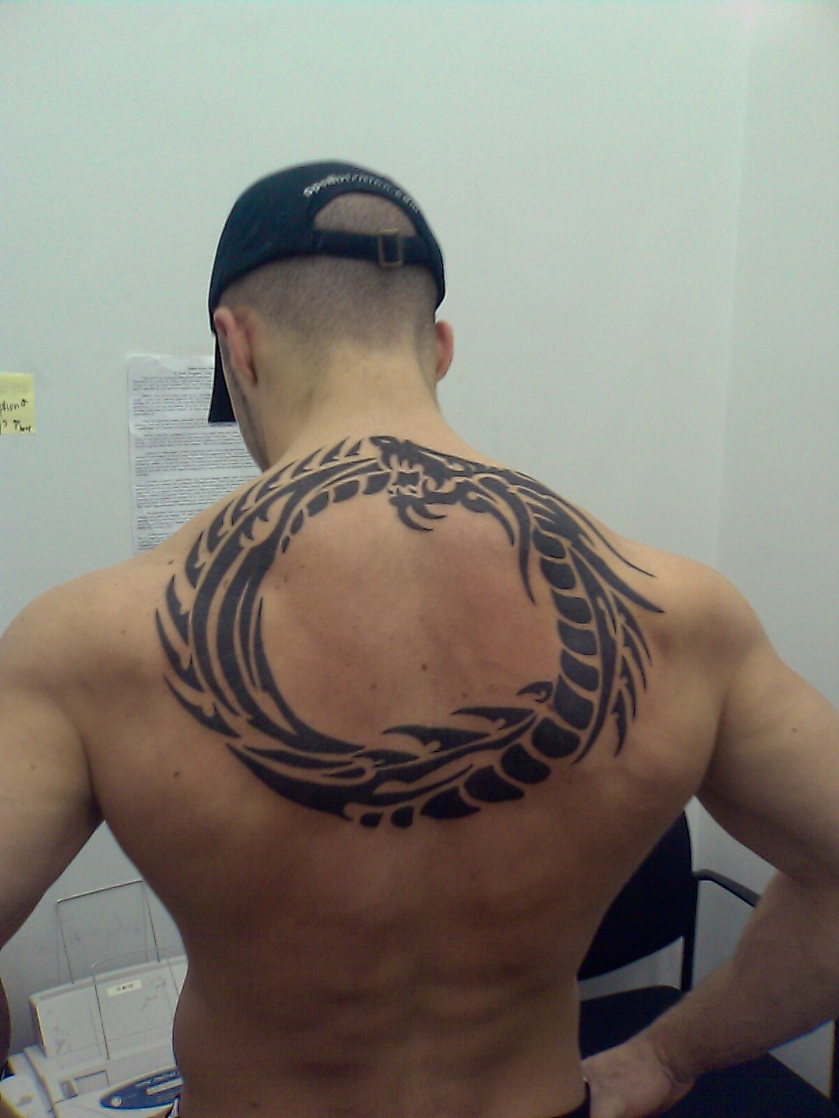tribal-dragon-back-tribal-tribe-tattoos-tattoo-designs-pictures ...
