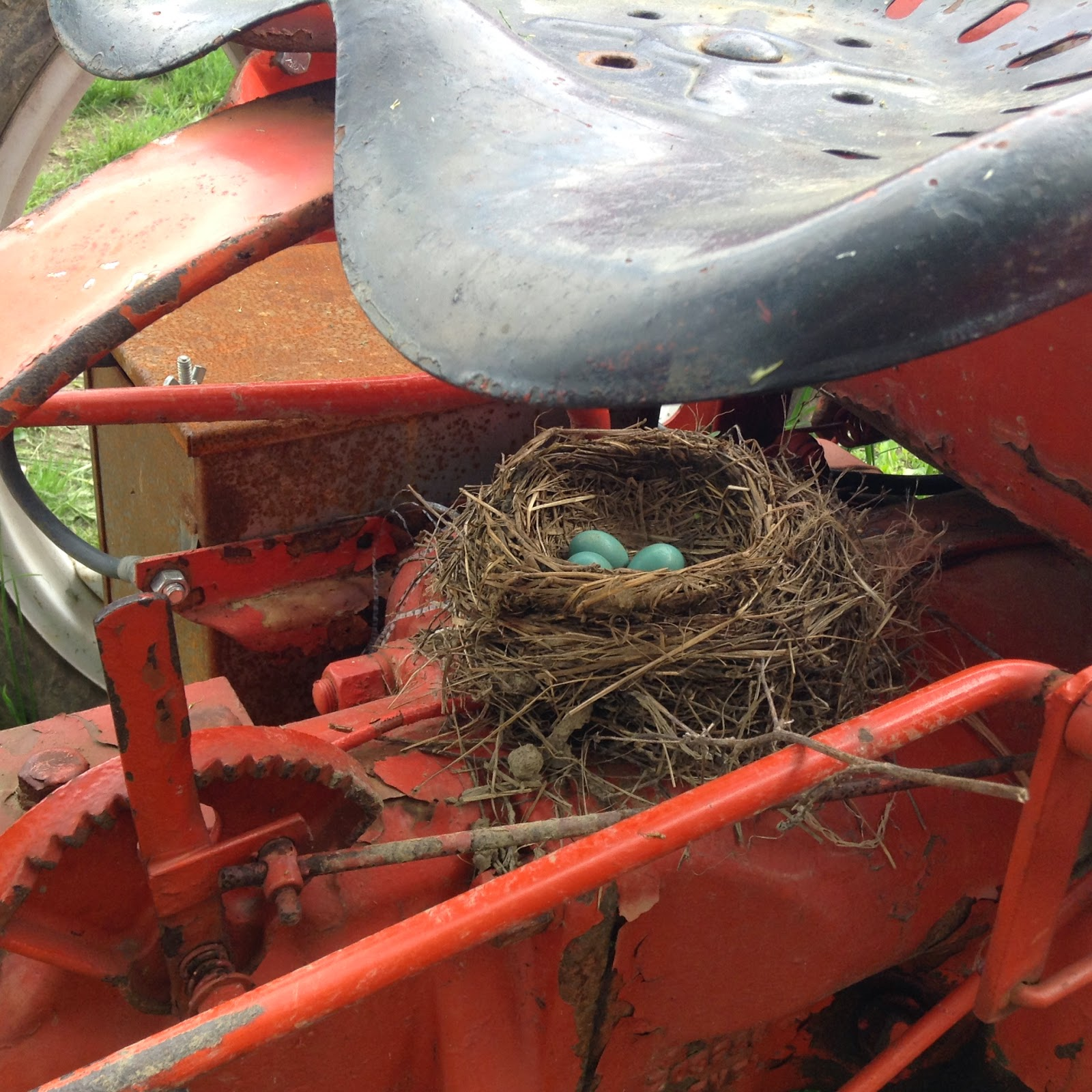 Robin's nest under tractor seat