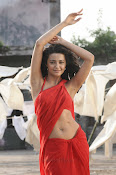 Surveen Chawla Hot Photos-thumbnail-1