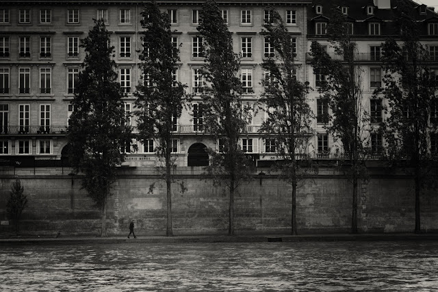 A street photograph of a man walking under trees on the banks of the Seine