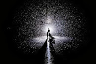 RAIN ROOM AT MoMA BY RANDOM