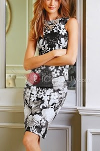 http://www.tidebuy.com/product/Floral-Print-Sleeveless-Sheath-Dress-11151276.html