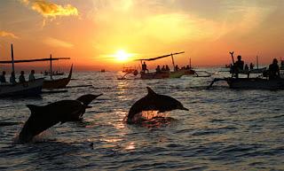 Dolphin trip at Lovina