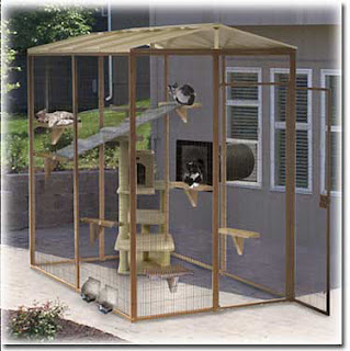 Cat Enclosures For Sale South Africa