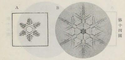 『雪華図説』の研究 模写図と顕微鏡写真と比較 第十四図