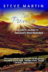 The Promise - One Man's Journey To See God's Word Revealed