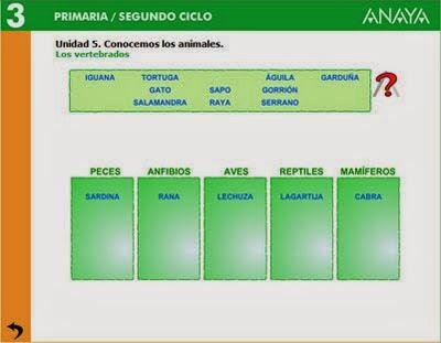 http://aula3asvb.blogspot.com.es/search/label/Animales%20Vertebrados