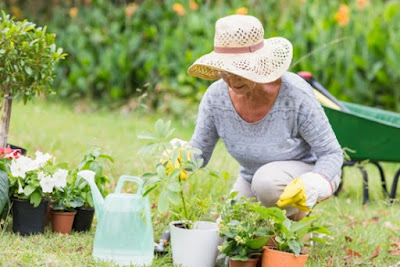 Summer Health And Safety Tips For The Elderly