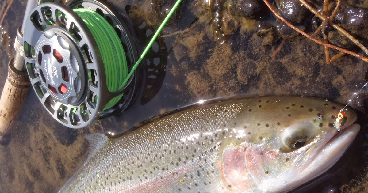 Irideus Fly Fishing Products: As the spawning steelhead ...
