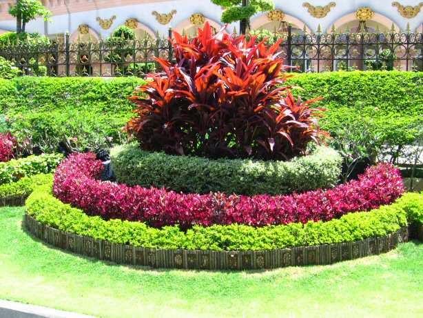 Dejardin online dise os de jardines for Diseno de jardines online gratis