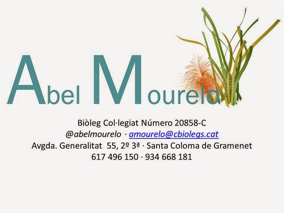 ABEL MOURELO