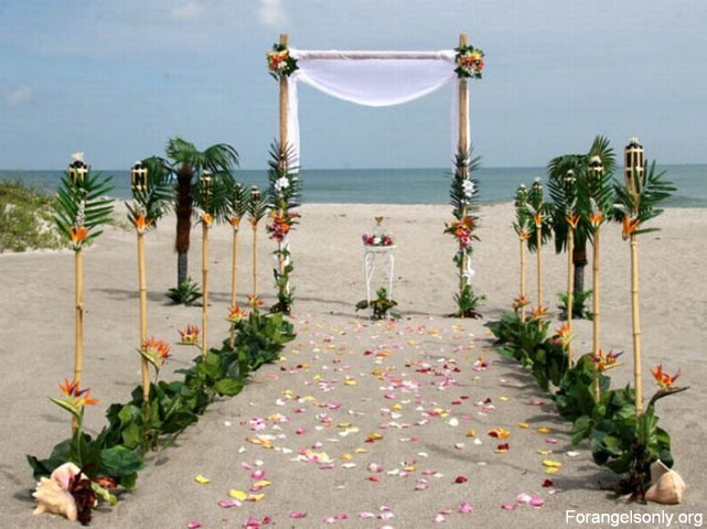 Landscape Wedding: Beach Wedding Decor
