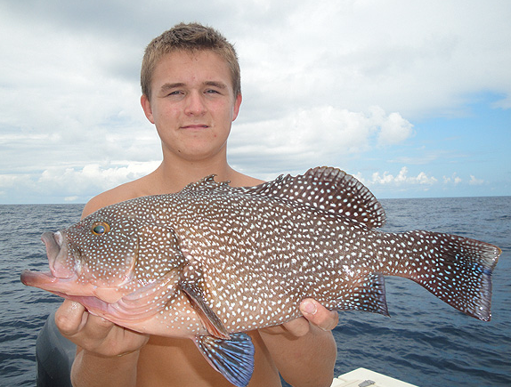 Groupers florida world record biggest fish world ever caught big huge