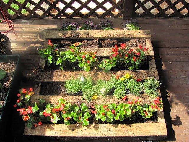 decoracao jardim paletes : decoracao jardim paletes:Meu Pomar: JARDINS DECORATIVOS FEITOS COM PALETES REAPROVEITADOS