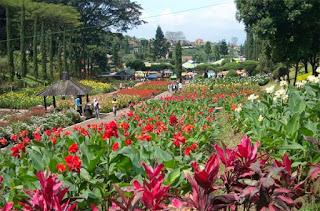 kebun bunga cihideng