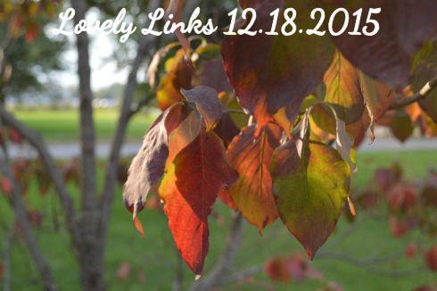 Lovely Links 12.18.2015   seriously-lovely.blogspot.com