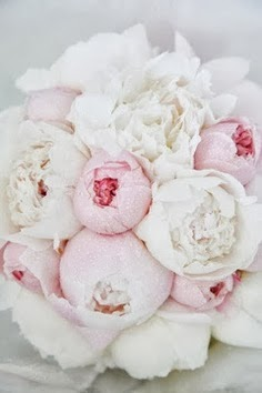 amazing white and peonies