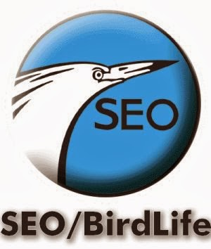 SEO/BirdLife desarrolla a través de una subvención de la Consejería de Medio Ambiente un Proyecto de Restauración y Estudio de la zona degradada de la Loma del Acebuchal