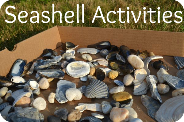 Seashell activities simple play ideas - Things to do with seashells ...