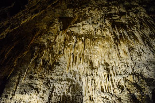 Ruakuri caves, 鐘乳洞