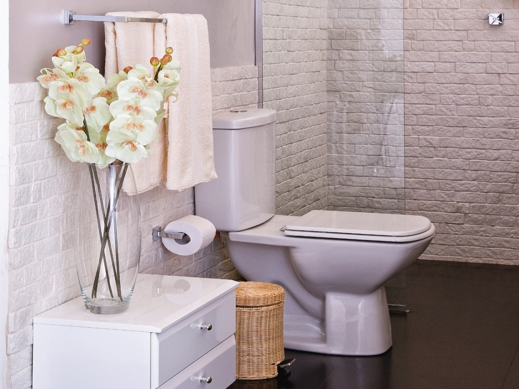 Carvalho Arquitetura e Decoração: Banheiros parte 2 Revestimentos #846047 1024x768 Banheiro Adequado Para O Gato