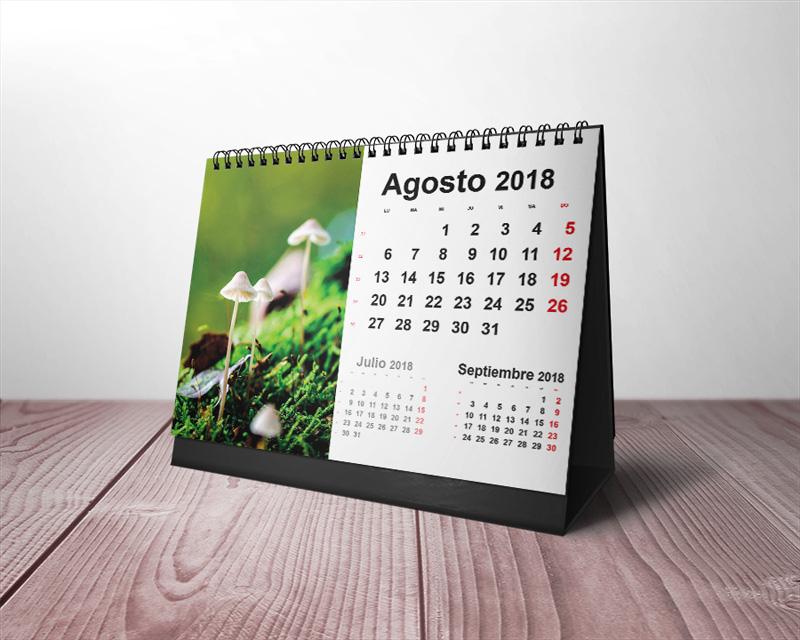 Revista del Calendario de Rutas 2018-2019