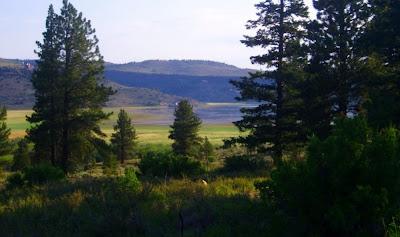Campground at Panguitch Lake