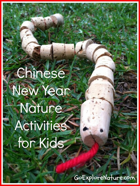 Chinese New Year nature activities for kids