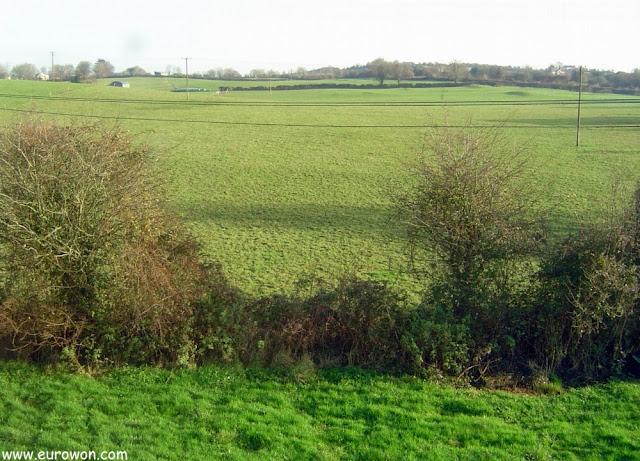 Vista de los campos del centro de Irlanda