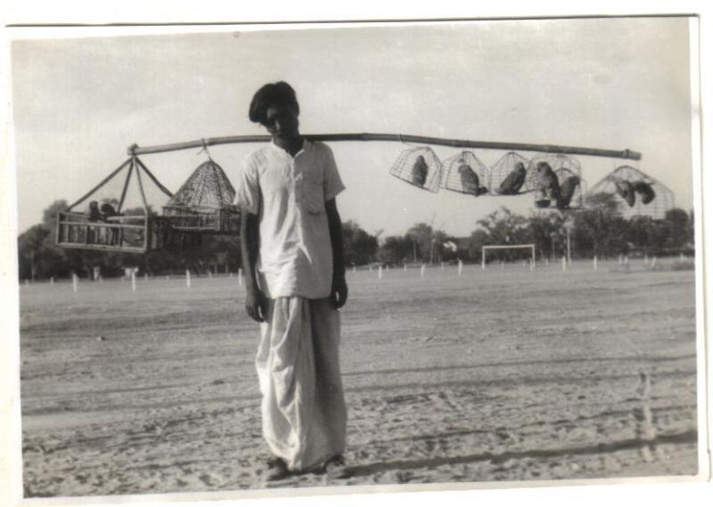 Ambala India  city photo : Bird Seller Ambala Haryana India 1945 Old Indian Photos