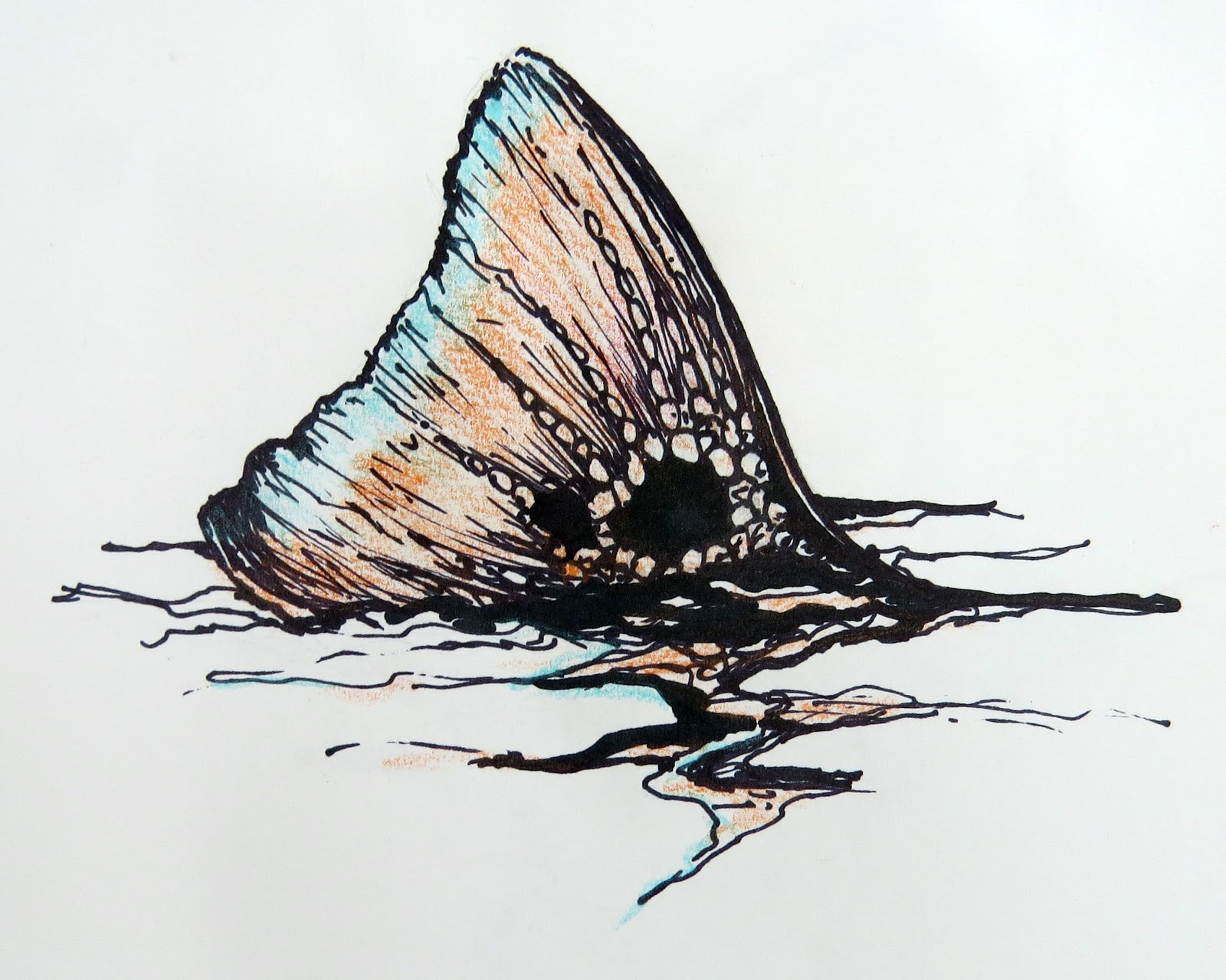 fly fishing drawing - photo #45