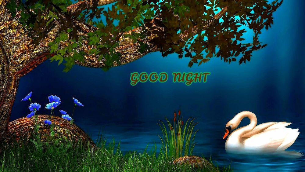 Good Night Hd 3d Pics Best Hd Wallpaper