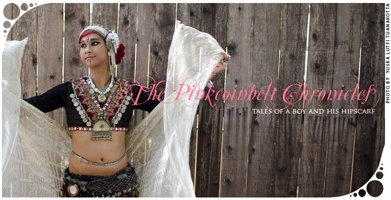 the pinkcoinbelt chronicles