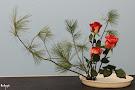 Nghệ thuật cấm hoa - Nắng Mai trên  xứ Tuyết