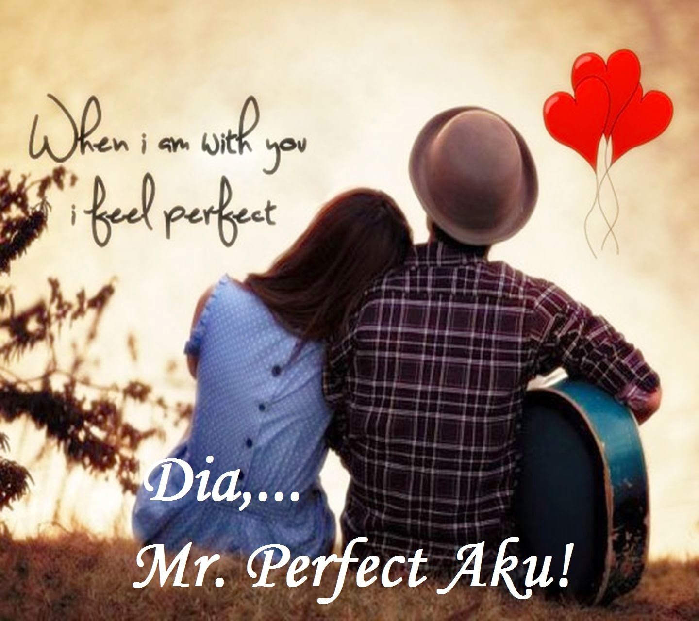 DIA,... MR. PERFECT AKU!
