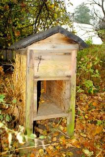 Wysoka śmiertelność pszczół budzi coraz większy niepokój, bo straty mogą dotknąć całe rolnictwo. Szacuje się, że w naszej szerokości geograficznej ok. 78 proc. gatunków to rośliny owadopylne (fot. Dariusz Małanowski)