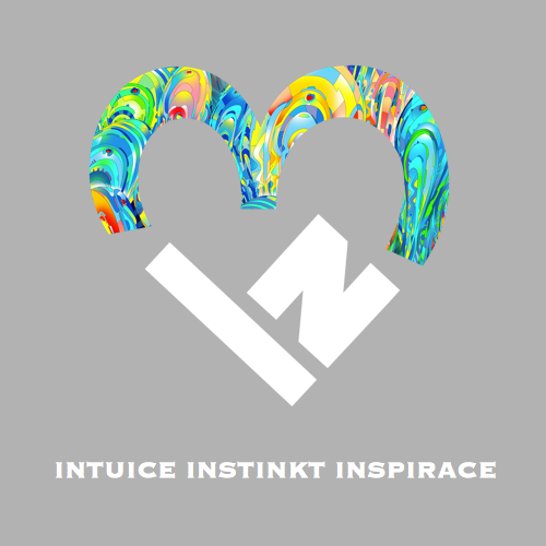 Intuice Instinkt Inspirace