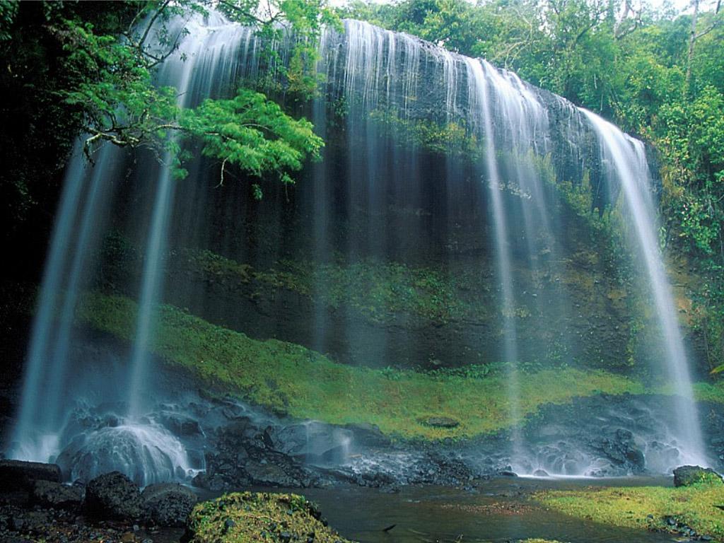 Most Beautiful Nature