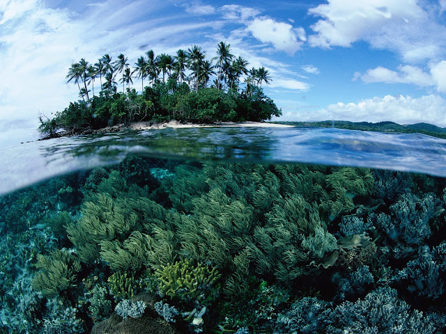 top 10 largest islands in the world, new guinea
