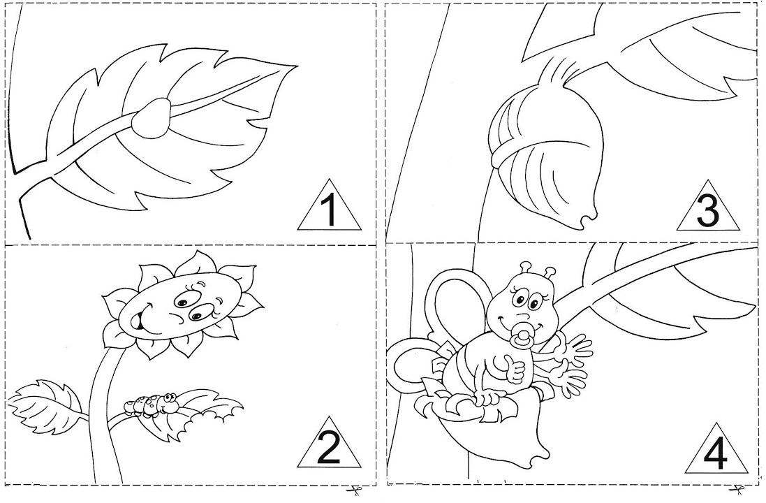 Excepcional Ensinar Aprender Infantil: Livro da Borboleta - Metamorfose SJ28